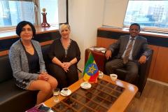 """שגרירות אתיופיה- מפגש המשמר המגדרי הבינ""""ל"""